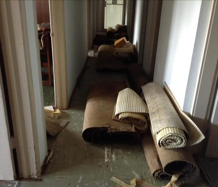 Water Damage with Carpet Removal in Miami, FL