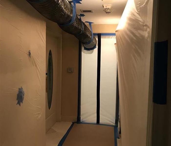 Mold Remediation in Bal Harbour, FL