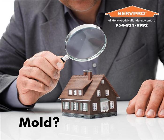 Mold Remediation Mold Remediation and the EPA in Your Hollywood Home